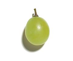 Estratto d'uva